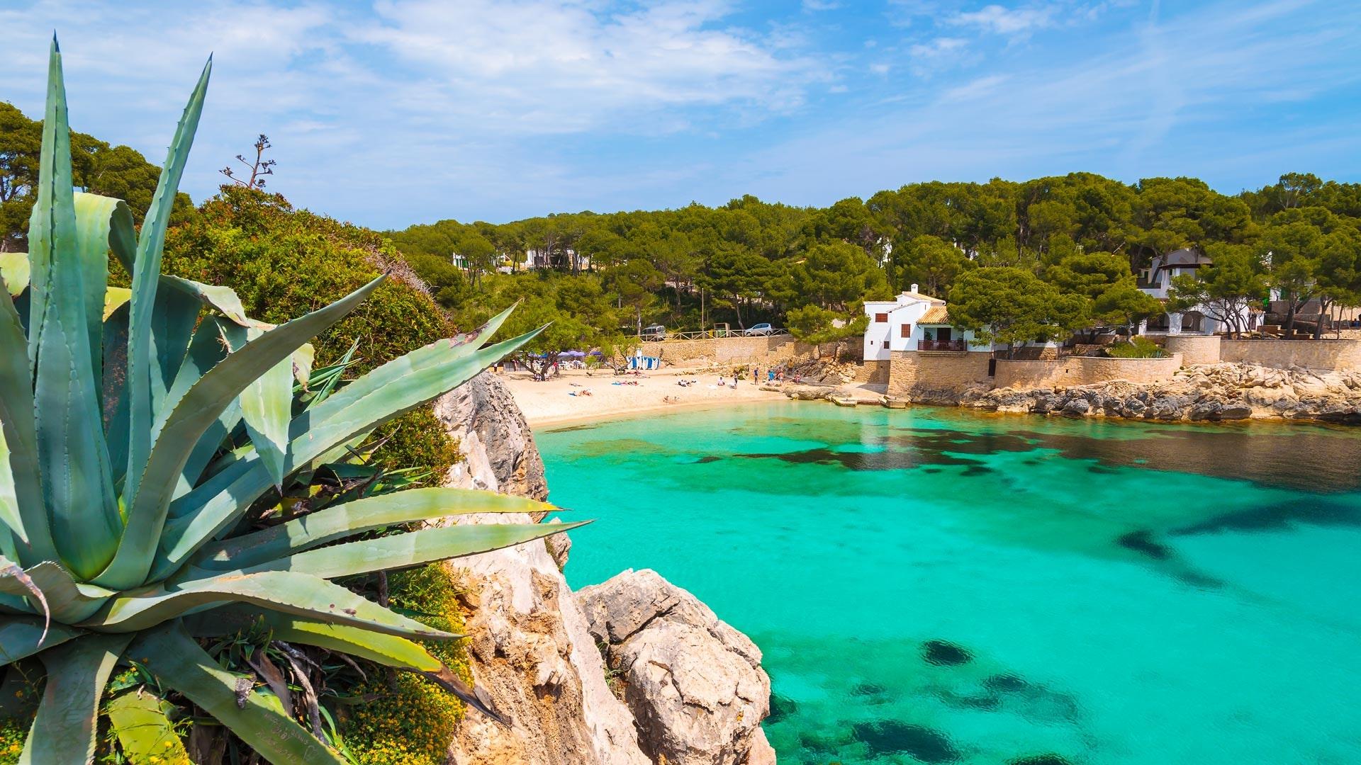 rejser spanien tilbud