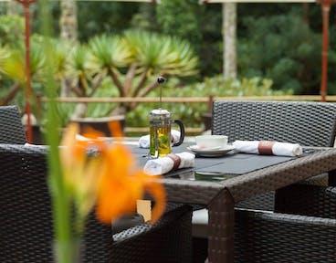 Terra Nostra Garden Hotel Auf Sao Miguel Siglinde Fischer
