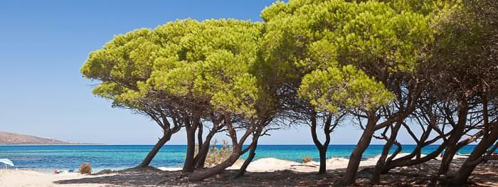 Traumurlaub auf Sardinien