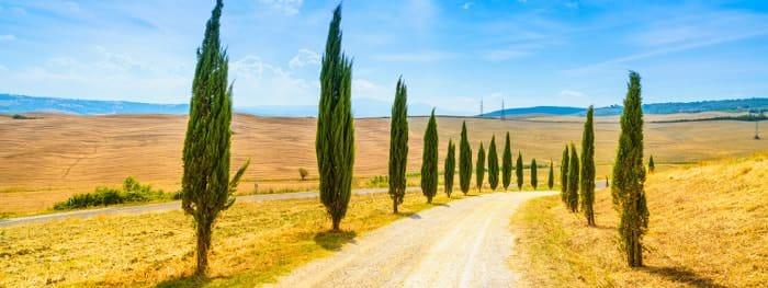 Urlaubsklassiker Toskana