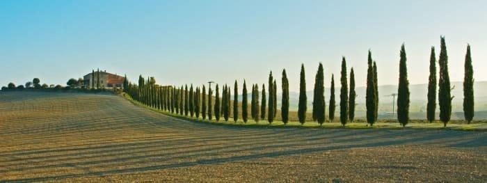 Ferienhäuser, Apartments und Hotels für Ihren Urlaub in der Toskana